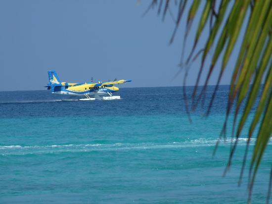 Kuramathi Island Resort: Seaplane arrival