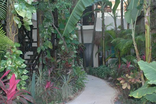 Kinbe Hotel: Garden Area