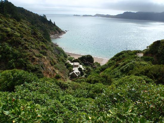 Ngaio Bay Ecostay B&B: Ngaio Bay and Accomodation