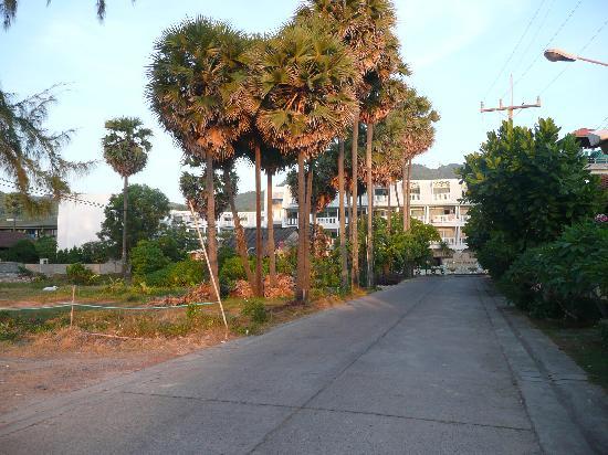 Andaman Seaview Hotel: Blick von der Straße Richtung Hotel