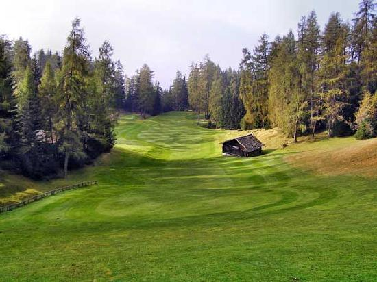 Hotel Princess Bergfrieden: One of the other local golfclubs