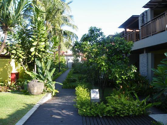 Chongfah Beach Resort: gardens in front of deluxe rooms