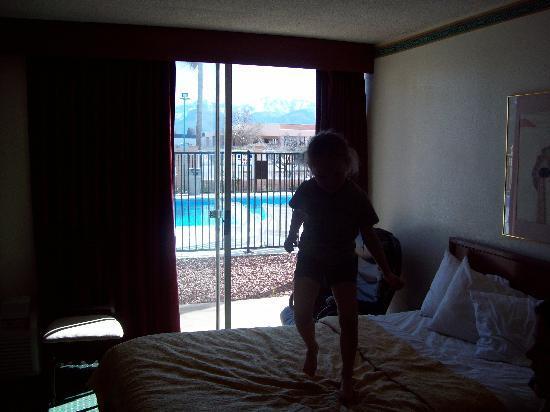 Quality Inn: the room