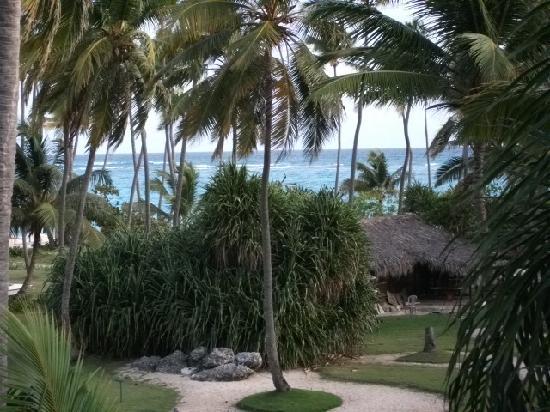 Grand Palladium Punta Cana Resort & Spa: vue de la chambre