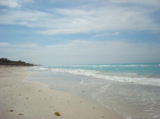 Iberostar Varadero: Beach at the Iberostar