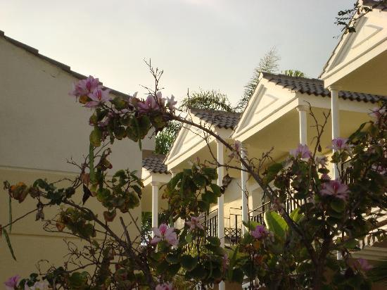 Gran Oasis Resort: Oasis Resort