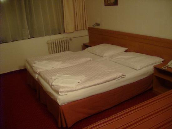 Globus: Hotel room