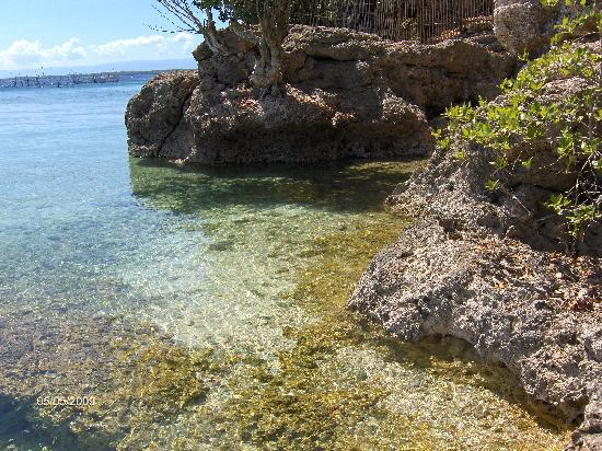 Calape, Philippines: Crystal Clear Water
