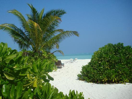 Holiday Island Resort & Spa: View from our Villa