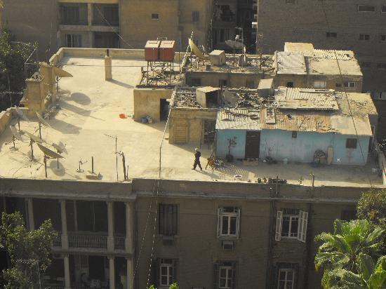 President Hotel: A glipse of the peaople living on the roofs of Cairo