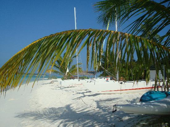 Holiday Island Resort & Spa: Watersports centre.