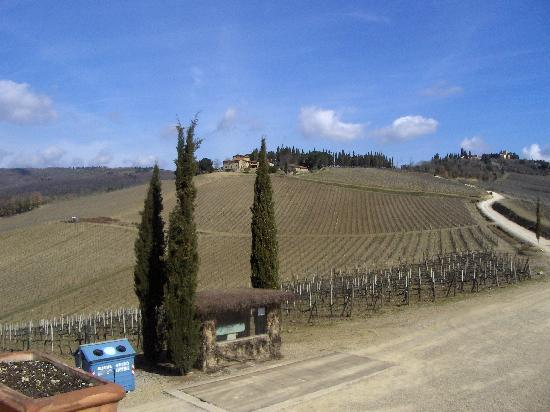 Tuscan Wine Tours by Grape Tours: Chianti Classico region in March