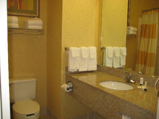 Fairfield Inn Lumberton: Bathroom