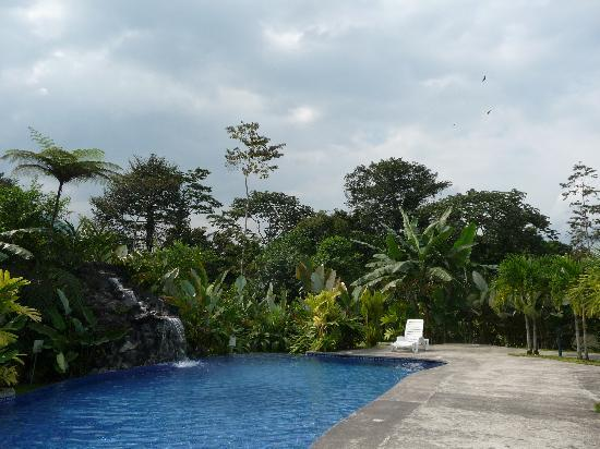 Casa Luna Hotel & Spa: The swimming pool