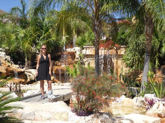 Ocean Maya Royale: The beautiful landscaping