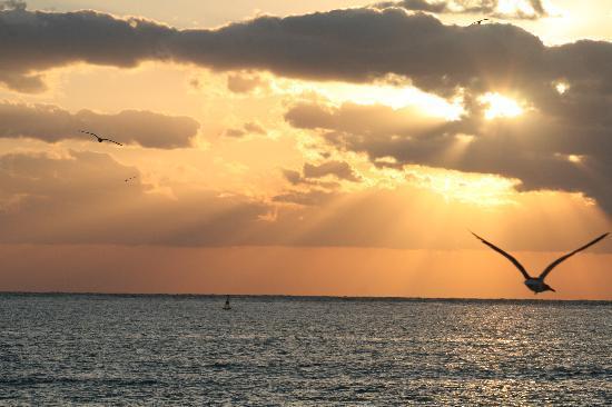 Panama Jack Resorts Playa del Carmen: Beautiful sunrises