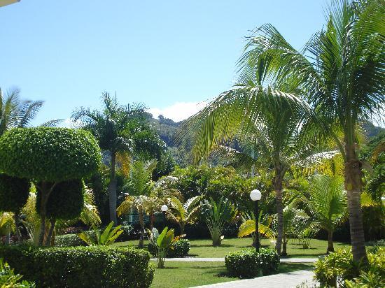 ClubHotel Riu Bachata: beautiful grounds