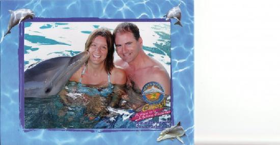 "ClubHotel Riu Bachata: dolphin at ""ocean world"""
