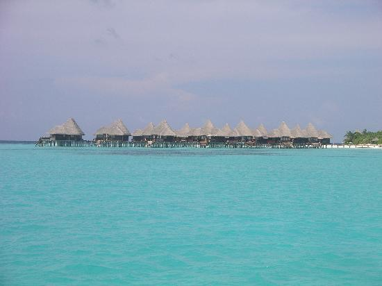 Coco Palm Dhuni Kolhu: Villas sur pilotis