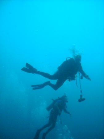 Belizean Shores Resort: Blue hole