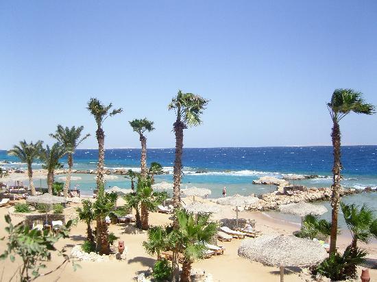 Albatros Citadel Resort - Sahl Hasheesh: plage et lagons