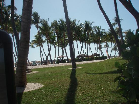Casa Marina Key West, A Waldorf Astoria Resort: The beautiful grounds and beach at the Casa!