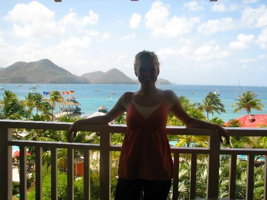 Sandals Grande St. Lucian Spa & Beach Resort: View from our room