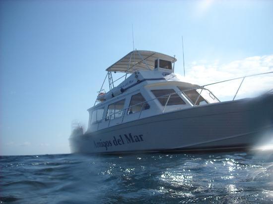 Amigos Del Mar Dive Shop: Our Boat