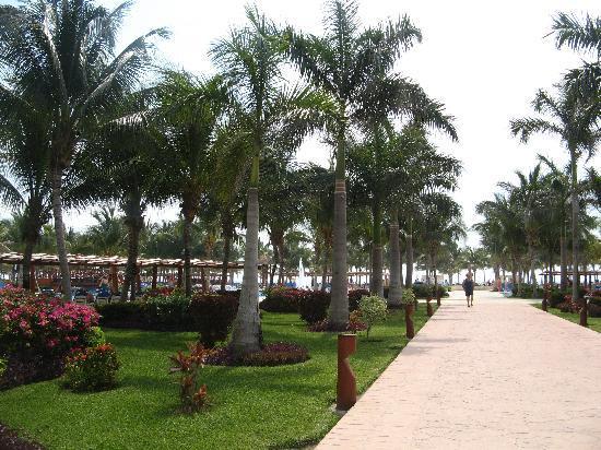 Barcelo Maya Tropical: walkway