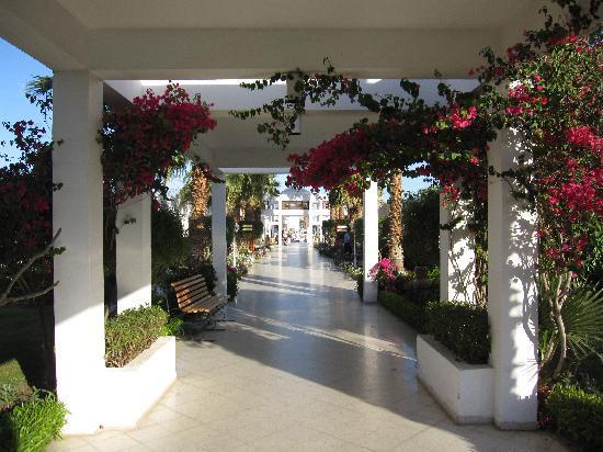 Maritim Jolie Ville Resort & Casino Sharm El-Sheikh: Il viale che collega le stanze alla piscina