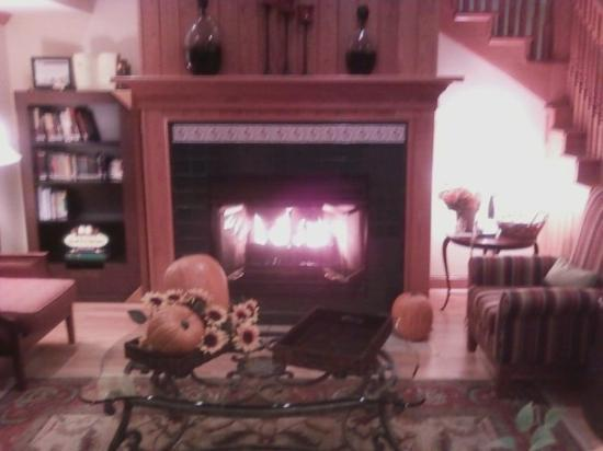 Country Inn & Suites by Radisson, Big Flats (Elmira), NY: The fireplace in the lobby