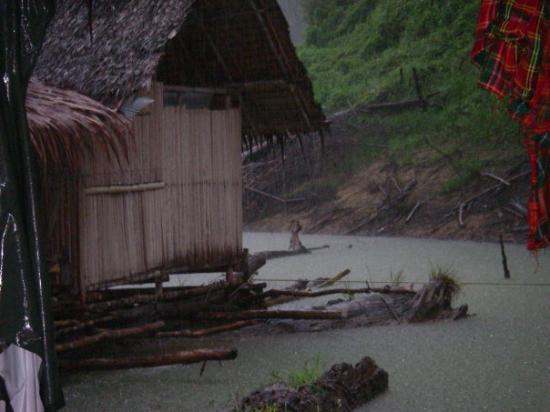 Bilde fra Khao Sok National Park