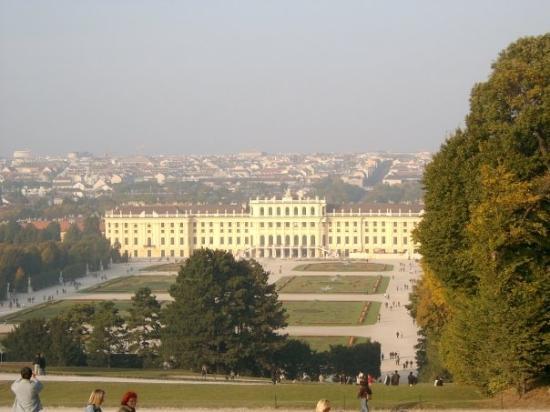 Bilde fra Schönbrunn