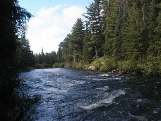 Algonquin Provincial Park, Canada: Canada