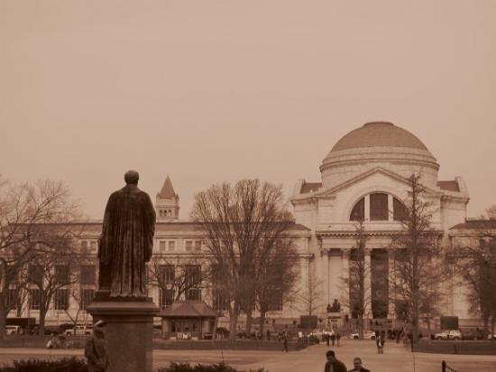 Bilde fra Smithsoniansk nasjonalmuseum for naturhistorie