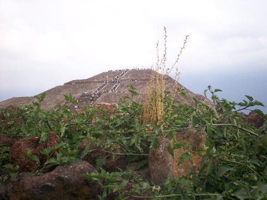 Teotihuacan 9