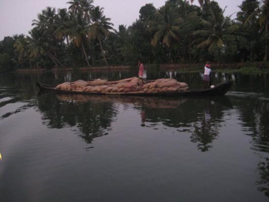 Bilde fra Alappuzha