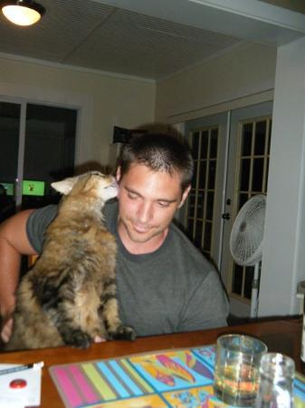 Indialantic, FL: Mike & Anne are watching our cat Mario, but Mike and Mario have a special bond.