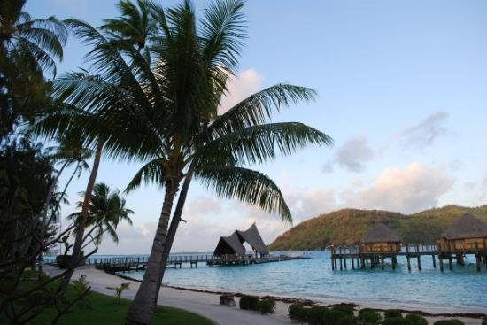 Bora Bora, Fransk Polynesia: That peer at the end is were the boat comes to pick up and transport to the main island of bora