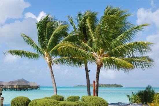 Bora Bora, Fransk Polynesia: Funny thing is this was French Polynesia's winter!!!!!!!!  Winter here takes place during our su