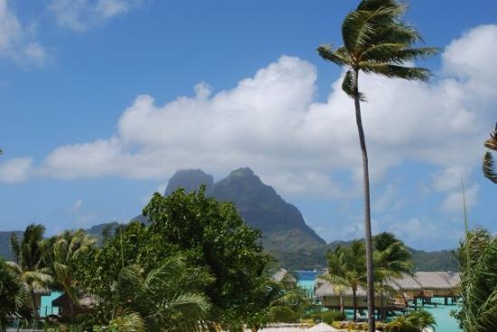 The mountainous part is the main island of Bora Bora.  We are on the Motu