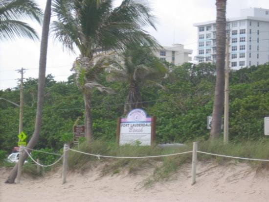 Fort Lauderdale, FL: Ft. Lauderdale Beach