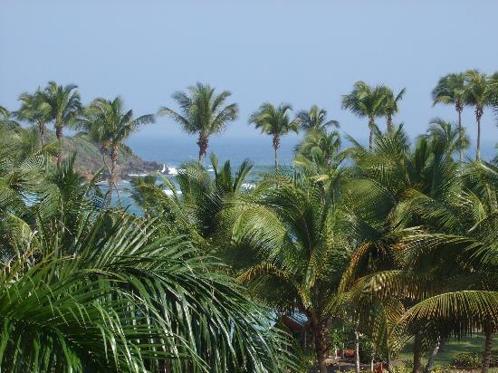 Hyatt Residence Club Dorado, Hacienda del Mar: View from the balcony