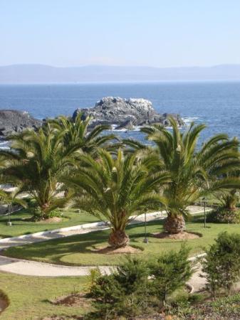 La Serena, Chile: Vista desde mi hotel