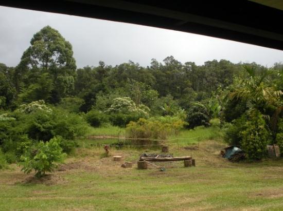 Hilo, HI: La'akea grounds.