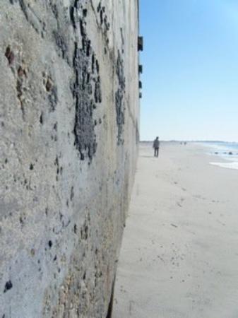 Bilde fra Cape May