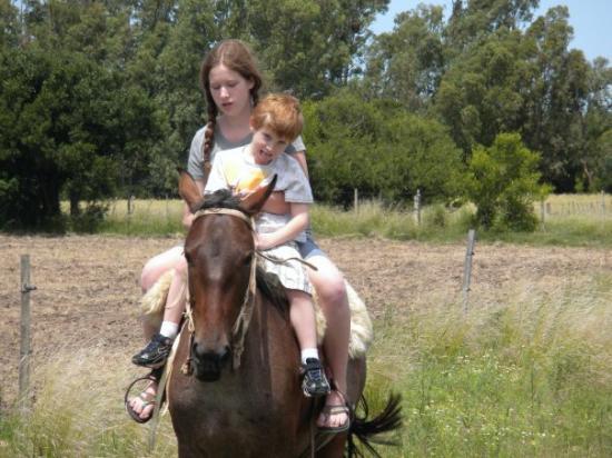 Florida, Uruguay: En el campo.  On the farm with Alex, Silvina & family