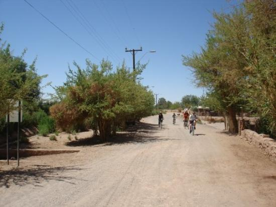 San Pedro de Atacama, Chile: Biking to the ruins...