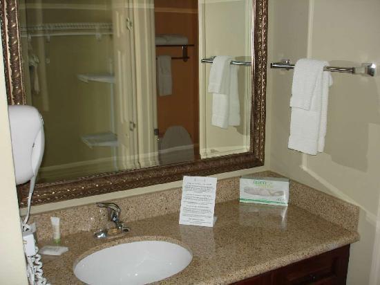 Staybridge Suites Augusta: Sink