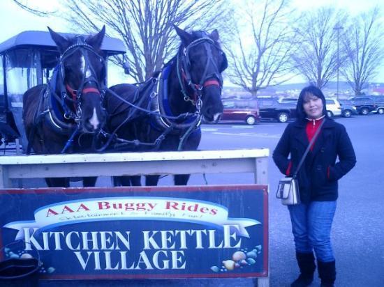 Amish Country: ESTOS DOS PADROTES NOS LLEVARON A CONOCER COMO VIVEN SUS AMOS...